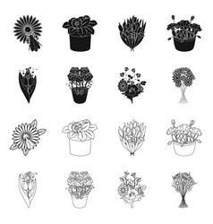 Isolated object spring and wreath icon set of vector