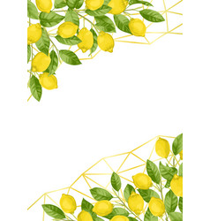 Luxury lemon brunches and herbs background vector