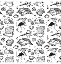 Seamless pattern of Sea shells vector