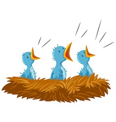 Three baby birds in nest vector