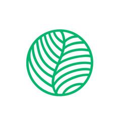 tropical plant green leaves logo round bio emblem vector image