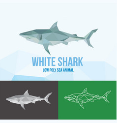 White shark with triangle polygonal style vector