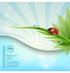 with a background of blue sky template nature vector image