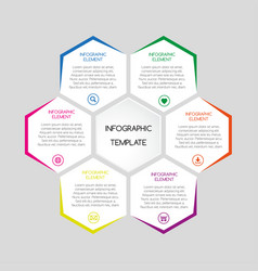 infographic template with hexagons vector image vector image
