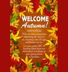 Autumn maple leaf foliage rowanbery poster vector