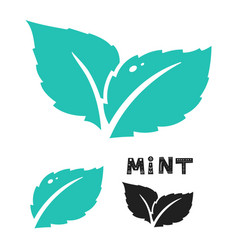 blue mint leave icon on white mint leaves vector image