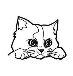 Cat cartoon line art vector image