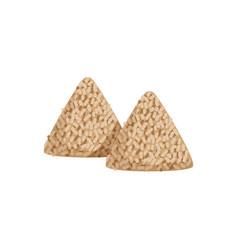 chinese rice dumplings symbol of vector image