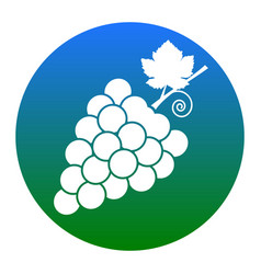 grapes sign white icon in vector image