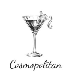 Hand drawn sketch cosmopolitan cocktail drinks vector