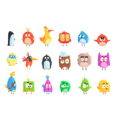 little cute bird chicks collection of cartoon vector image