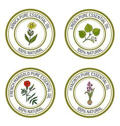 Set essential oil labels arnica linden french vector