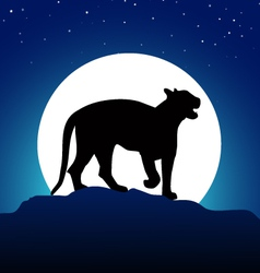 Tiger and Moon at Night vector image
