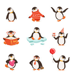 cute little penguin cartoon characters set for vector image