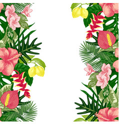 hand drawn tropical background vector image