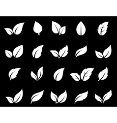 isolated leaf icon set vector image vector image