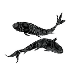 pisces zodiac sign on white background fish vector image vector image