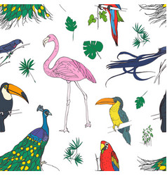 beautiful colored seamless pattern with tropical vector image