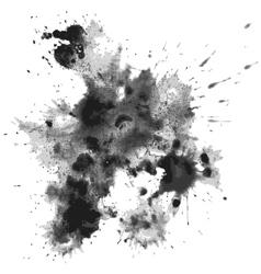 blots vector image