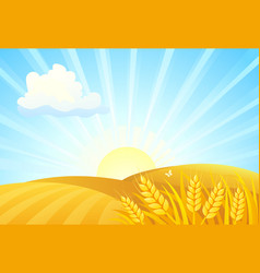 Autumn sunrise fields vector