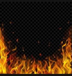 Background fire flames vector