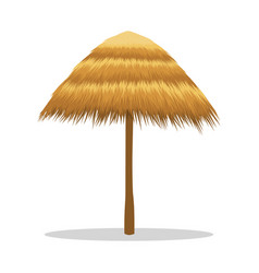 Bamboo beach umbrella isolated on white vector