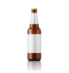 Brown beer bottle with labels template vector image
