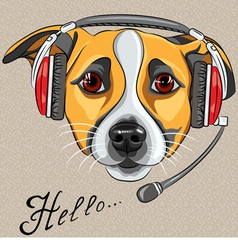 dog Jack Russell Terrier with phone headset vector image