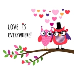 Owl Happy Valentines Day vector image