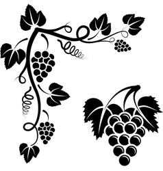 Bunch of vine vector