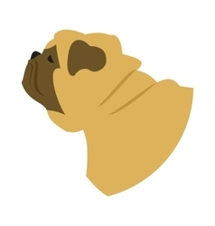 Dog head pug vector image vector image