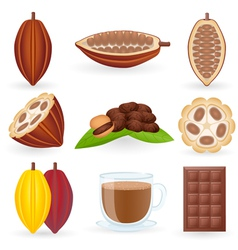 Cocoa icon vector