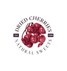 dried cherries emblem vector image