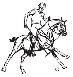 Equestrian polo player riding a horse vector