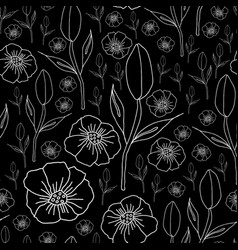 poppies and tulips on black background vector image