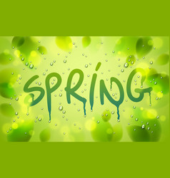 spring word drawn on a window fresh green leaves vector image