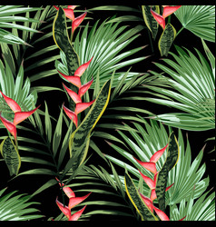tropical leaves and paradise heliconia flowers vector image