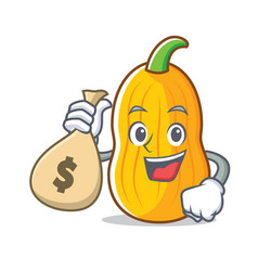 With money bag butternut squash character cartoon vector