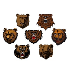 Different brown bear heads vector image vector image