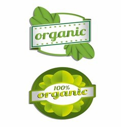 Hundred Percent Organic Label vector image vector image