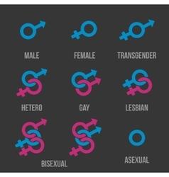 Sexual orientation icons vector