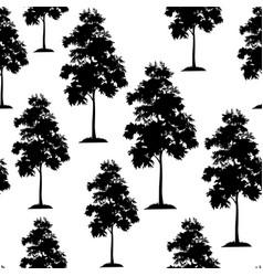 Acacia trees seamless vector