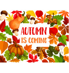 autumn leaf and harvest vegetable welcome banner vector image