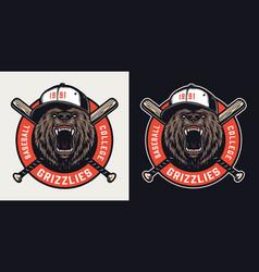Baseball league vintage colorful emblem vector