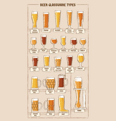 beer types a visual guide to types beer vector image