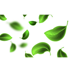 Blurred flying green leaves vector