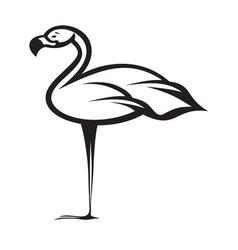 Flamingo1 vector