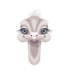 Funny little ostrich portrait on white vector