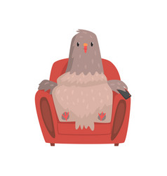 funny pigeon in red armchair with tv remote vector image