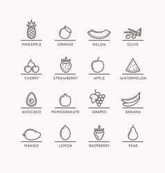 Linear icons of fruits vector